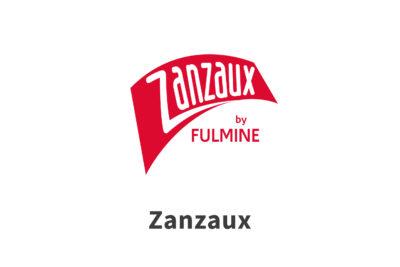 Zanzaux